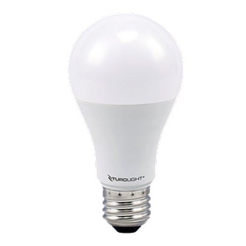 Ampoule DEL A19 9W